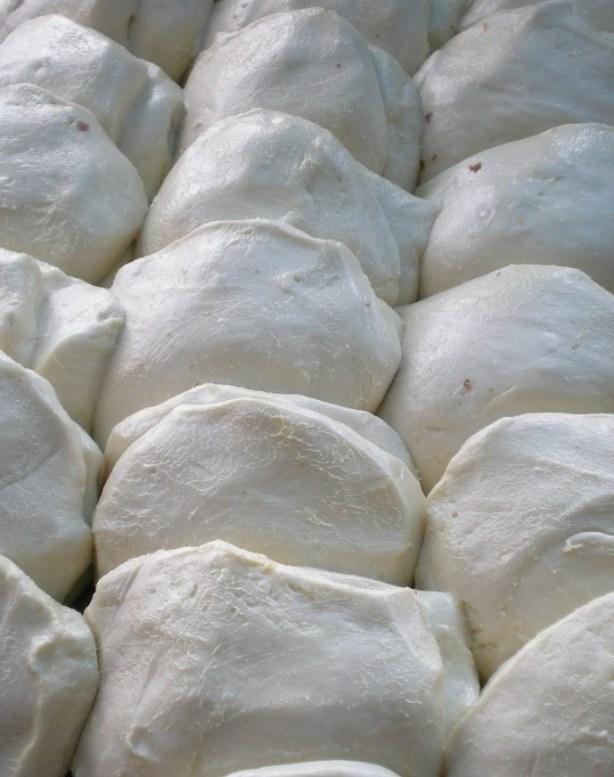 roti belum canai