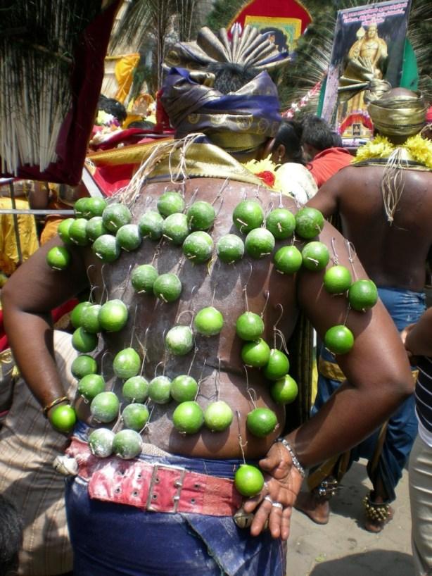 lime-back