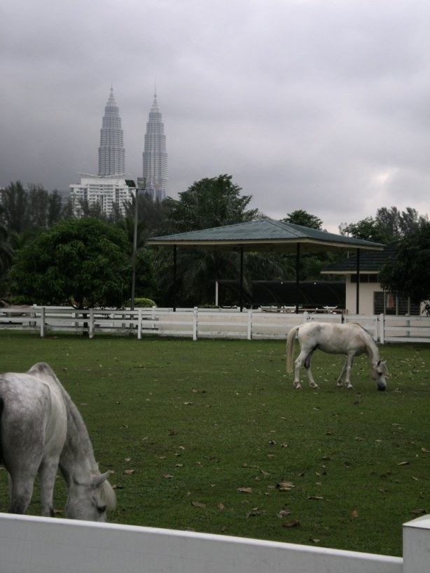 klcc-horse